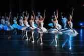 Balet Jezioro Łabędzie - Royal Russian Ballet