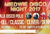 Miedwie Disco Night 2017