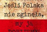 Jeśli Polska nie zginęła, my ją dobijemy - Katowice