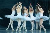 Jezioro Łabędzie - Royal Lviv Ballet
