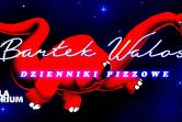 Stand-up Polska - Warszawa