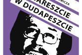 Krzysztof Daukszewicz - Gorzów Wielkopolski