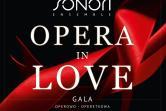 Grupa Operowa Sonori Ensemble - Bielsko-Biała