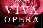 VIVA OPERA. Gala Operowo-Operetkowa z okazji Dnia Matki - największe przeboje z oper i operetek - soliści operowi